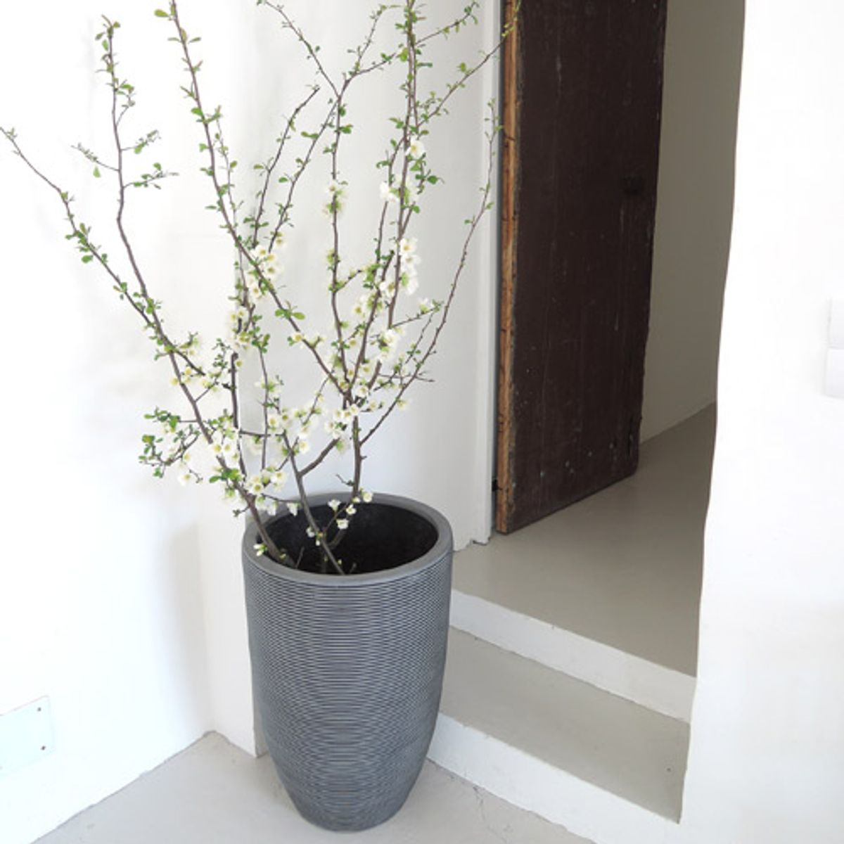 Pot de fleurs rond haut en fibre de pierre gris decoclico for Cache pot design interieur